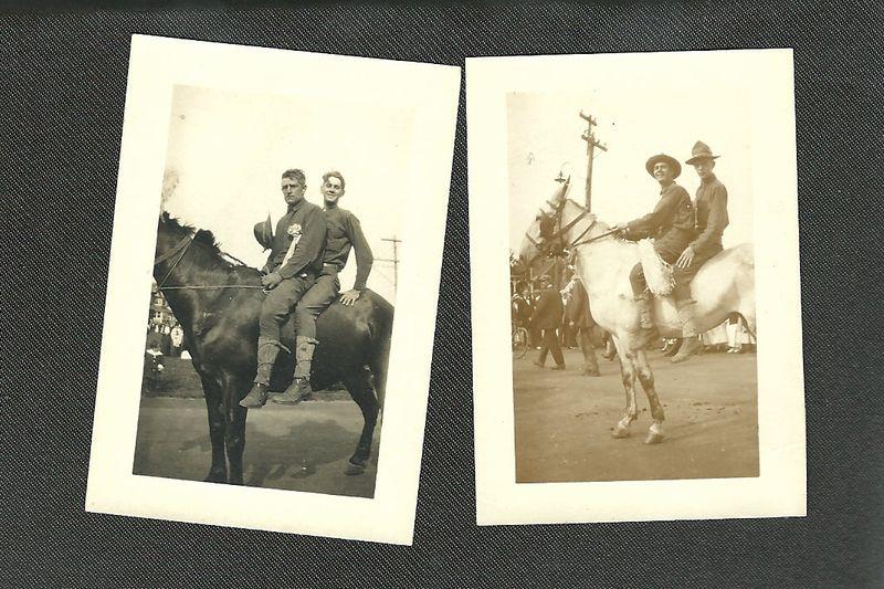 Whohorses