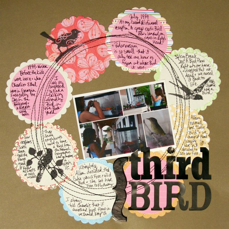 Third bird