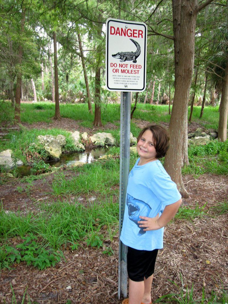 Alligatorsign