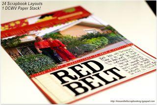 Redbeltdetails
