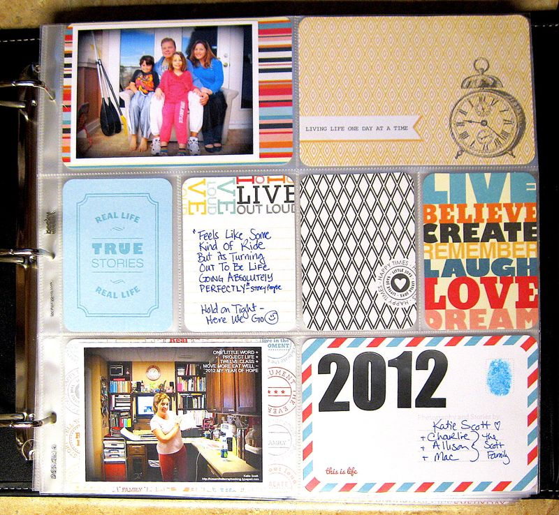 Projectlife2012begin
