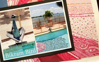 Bikram bird details