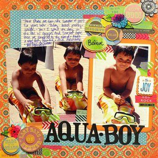 Aquaboylayout