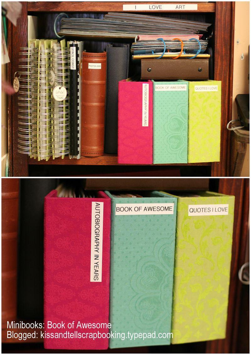 Bookofawesomemini