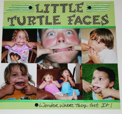 Little_turtle_faces